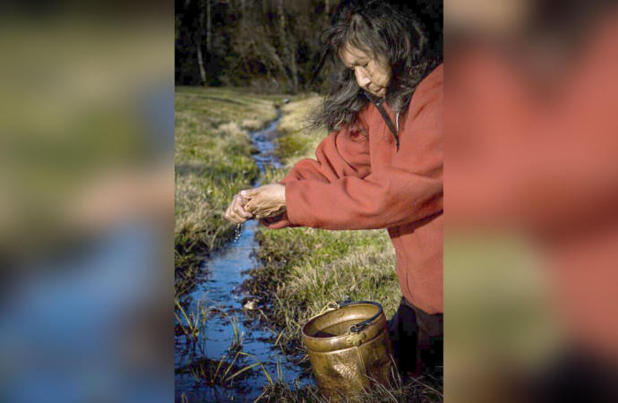 Beloved water protector Josephine Mandamin dies